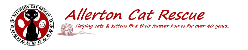 Allerton Cat Rescue